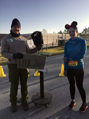 WDW Marathon 2017